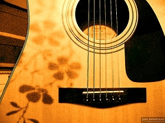 Brown Acoustic Super
