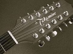 Electric Mandolin Black